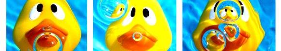 duckyheader.jpg